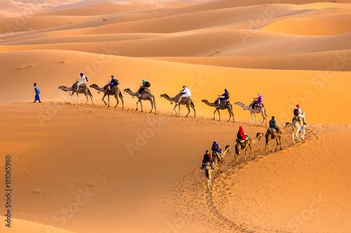 Canvas Prints Morocco Camel caravan