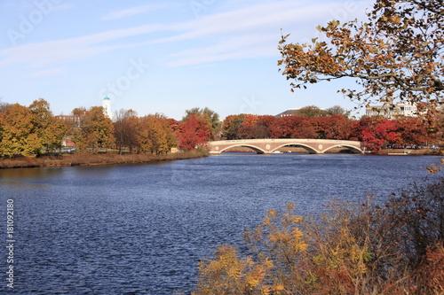 Fotografia, Obraz  Boston City waterfront