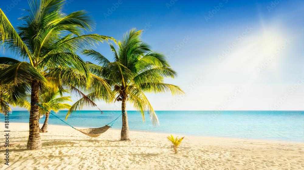 Fototapeta Sunny carribean beach with palmtrees and traditional braided hammock