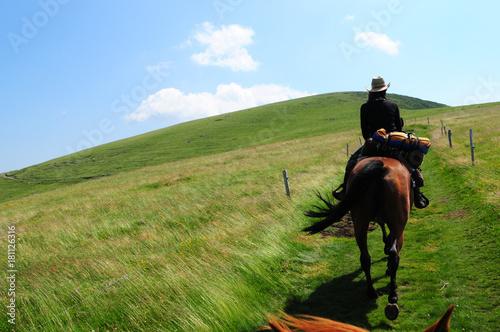 équitation dans le cantal Fototapet