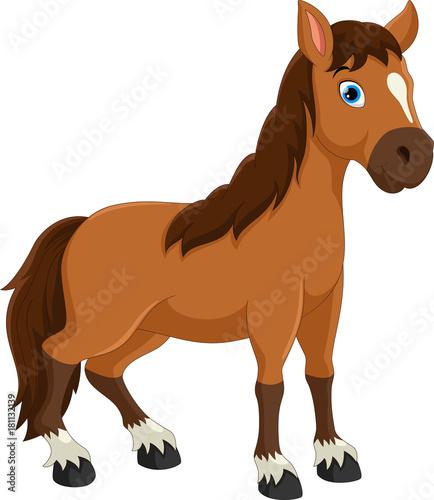 Fototapeta Cute horse cartoon obraz