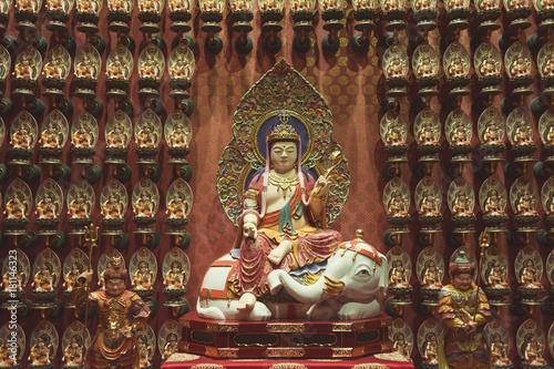 Samantabhadra Bodhisattva statue Canvas Print