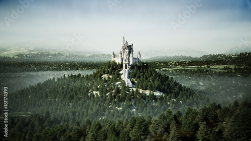 Poster Khaki Old fairytale castle on the hill. aerial view. 3d rendering.