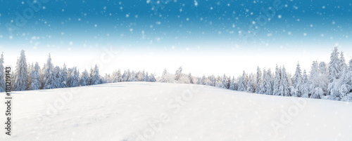Poster Landschap Winter panoramic landscape with forest on background