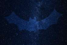 Bat Silhouette On Background O...