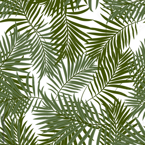 Wall Murals Tropical leaves Tropical seamless pattern with exotic palm leaves. Hawaiian style.