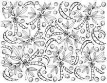 Hand Drawn Of Pigeon Pea And Cajanus Cajan Plants Background
