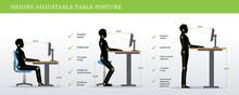 Height Adjustable And Standing Desks Correct Poses. Ergonomics Healthy Postures.