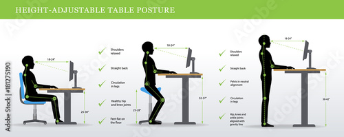 Obraz Height Adjustable and Standing Desks correct poses. Ergonomics healthy postures. - fototapety do salonu
