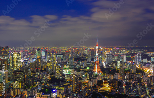 Night scene of Tokyo, Japan Canvas Print