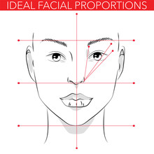 Ideal Facial Proportions
