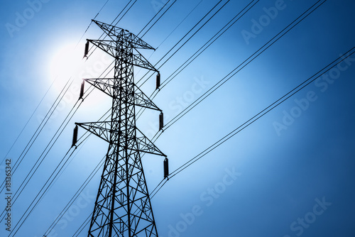 High voltage post or High voltage tower Canvas Print
