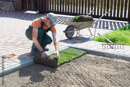 Spoed Foto op Canvas Donkergrijs Landscape Gardener Laying Turf For New Lawn
