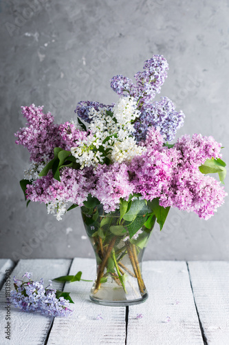 lilac branches in a glass vase on a gray background