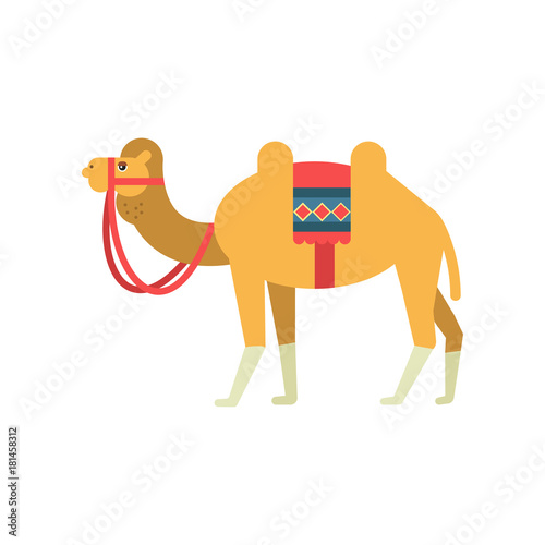 Camel Whit Saddle And Cover On The Back Two Humped Desert Animal