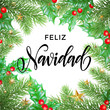 Feliz Navidad Spanish Merry Christmas hand drawn calligraphy in holly wreath decoration and Christmas stars garland. Vector winter New Year holiday greeting card white background design template