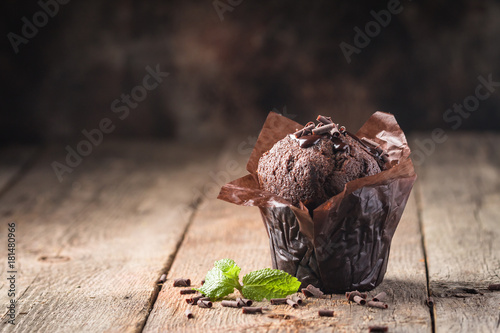 Homemade chocolate muffin Canvas Print