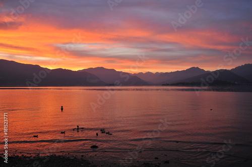 Poster Oranje eclat Ufer des Lago Maggiore bei Laveno mit den Silhouetten der Berge im Norden des Sees in der Abendröte