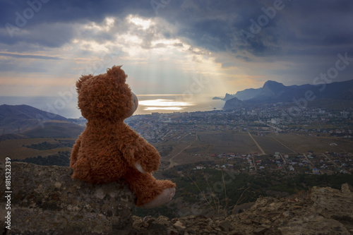 Photo  brown Teddy bear sitting on top of a mountain and look at the sea