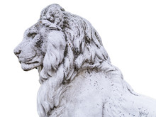 Portrait Of A Noble And Regal Male Lion Stone Statue In A Stately Home Garden In England, UK