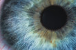 Leinwandbild Motiv An enlarged image of eye with a blue iris, eyelashes and sclera. the shot is made by a slit lamp with a built-in camera