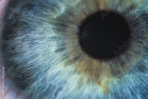 Foto auf AluDibond Iris An enlarged image of eye with a blue iris, eyelashes and sclera. the shot is made by a slit lamp with a built-in camera
