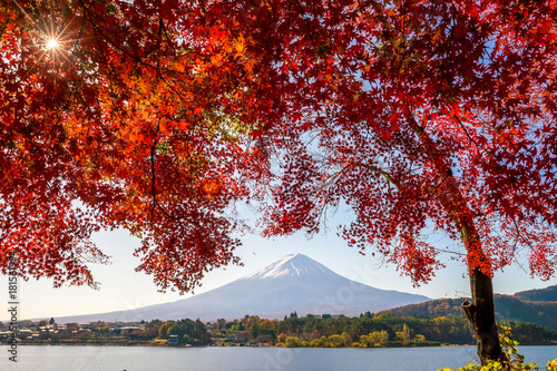 Garden Poster Brown Mt. Fuji in autumn with red maple leaves