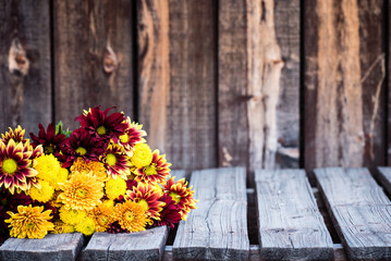 An assortment of mums in a bunch on a rustic wooden table.