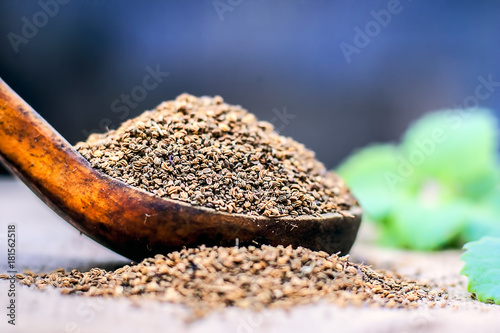 Photo sur Toile Condiment Trachyspermum ammi, Ajwain seeds in a wooden scoop with some leaves on a gunny background.