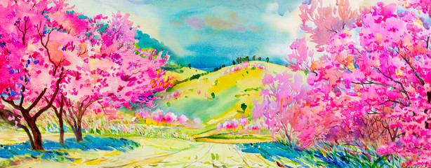 Panel Szklany Drzewa Painting pink color of Wild himalayan cherry flowers
