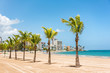 Puerto Rico San Juan beach landscape with palm trees in tropical famous tourist attraction destination in the Caribbean. Puerto Rico island, US territory.
