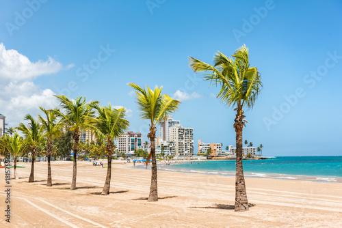 Foto op Plexiglas Caraïben Puerto Rico San Juan beach landscape with palm trees in tropical famous tourist attraction destination in the Caribbean. Puerto Rico island, US territory.