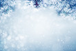 Winter background, falling snow on pine tree branches copy space
