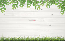 Vintage Wooden Planks Texture Background With Green Natural Frame Of Green Grass And Green Leaves. Vector Illustration.
