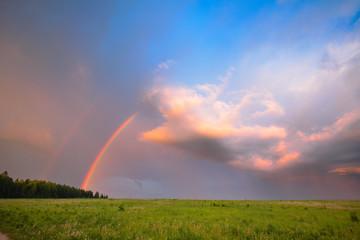 Rainbow in summer in the field