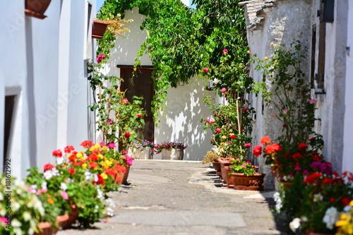 Fototapety, obrazy: Houses decoration, Italy