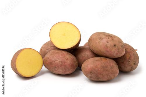 Kartoffelsorte Laura Canvas Print