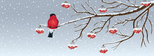 Snowy Christmas Background Wit...