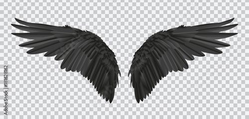 Tela Vector pair of black realistic wings on transparent background