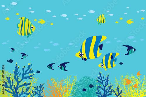 Poster Prune Reef fish, coral, sea