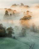 Złote światło wpadające przez gęstą mgłę w jesienny poranek w Lake District. - 181646520