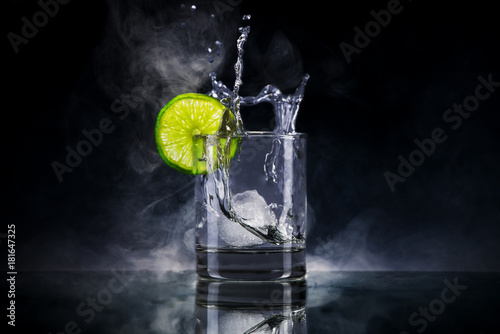 Gin mit Eis Canvas Print