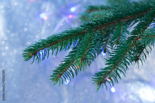 Fototapeta Fir branches with Christmas decorations obraz na płótnie
