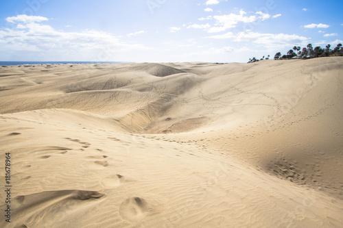 Spoed Foto op Canvas Zandwoestijn Maspalomas Sand Dune Desert, Grand Canaria