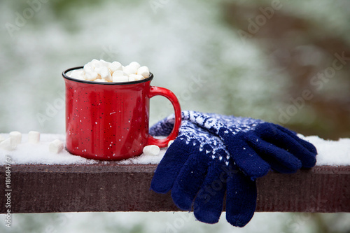 Red mug with tasty marshmallow on a wooden snow bridge in a winter park