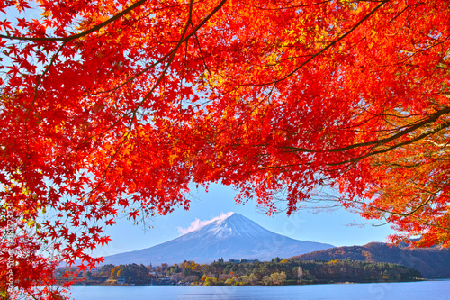 Keuken foto achterwand Rood traf. 秋の河口湖から見る富士山と紅葉