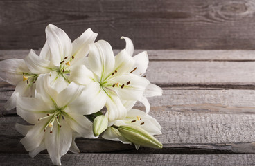 white lily on old wooden background