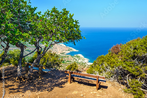 Foto op Aluminium Cyprus Trees with a bench against the sea, Akamas peninsula, Cyprus