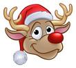 Reindeer in Christmas Santa Hat