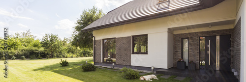 Obraz The dog already loved this house - fototapety do salonu